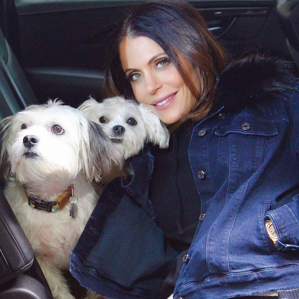 "Bethenny Frankel Named 2019 Official Spokesperson for ""Remember Me Thursday"" Global Pet Adoption Awareness Campaign"
